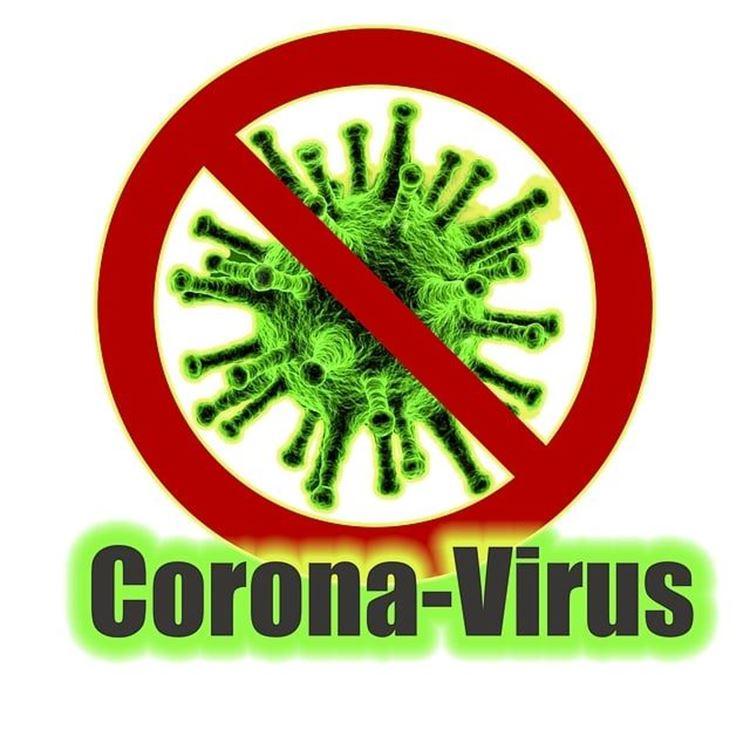 Anti-Corona-virus