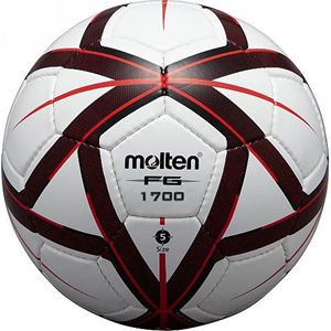 Picture of FG1700 Ballons d'entraînement SENIOR et Junior Molten T 5